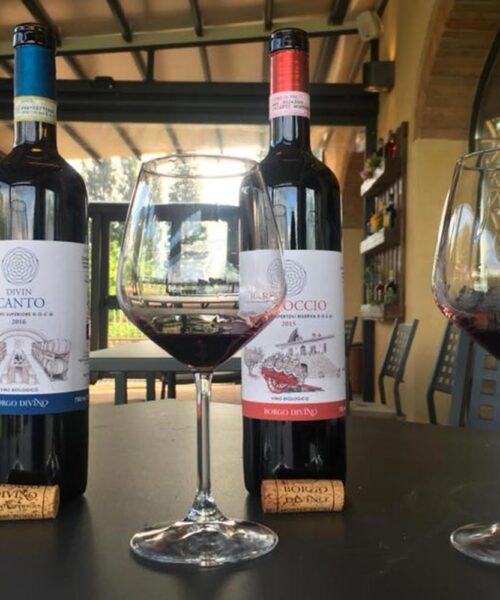 Wine tour & Wine Tasting